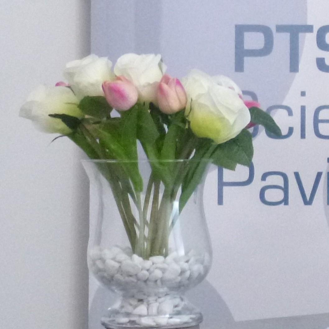 PTS Parco Tecnico Scientifico Pavia ufficio mosaico